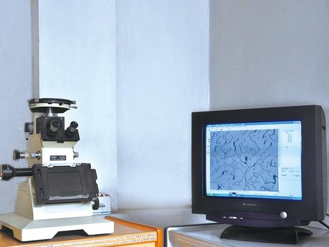 金相分析仪